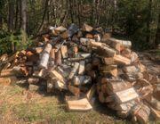 Birken Brennholz 45cm Scheite trocken