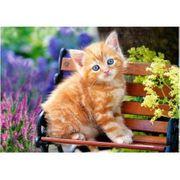 Kleintierbetreuung bei Ihnen zu Hause