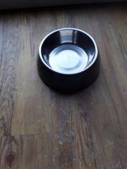 Hundenapf Wasser oder Futter Braun
