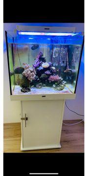 Juwel Aquarium mit Unterschrank und