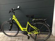 E-Bike Pegasus Solero E7R Bosch