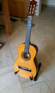 Gitarren-Set für Anfänger