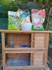 kaninchen Stall