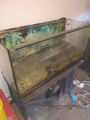 Aquarium 200 Liter