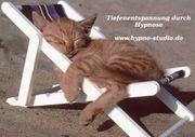 Die Kraft der Hypnose - Tiefenentspannung
