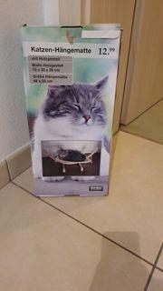 neue katzen schaukel