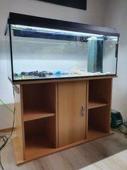 Aquarium 100x40x40cm - 160 Liter Buche