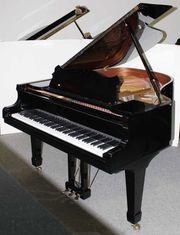 Klavier Flügel Zimmermann 177 Baujahr