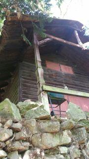 Waldgrundstück mit Holzhaus - Maikammer nahe
