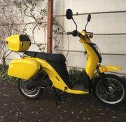 Elektro - Roller - Moped mit 18Ah