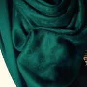 Louis Vuitton Monogramm Denim Schal