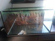 Aquarium Glasbecken Terrarium Kleintierkäfig 100x50x60