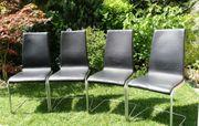 4 Stühle als Esszimmerstühle Freischwinger