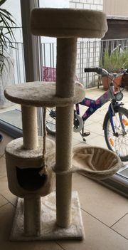 Kratzbaum für Katzen Neuwertig