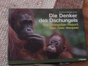 Tierbücher - Orangutan