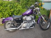 Harley Davidson - HD Sportester 883