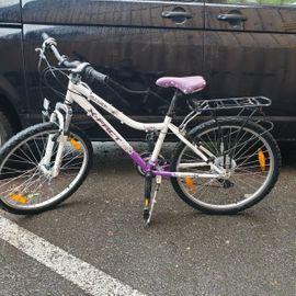 Jugend Fahrräder gebraucht kaufen Laendleanzeiger.at