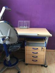Moll Buchstuetze Haushalt Möbel Gebraucht Und Neu Kaufen