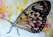abstrakt Schmetterling farbenfroh