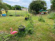 Garten mit kleiner Laube