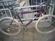 Mountainbike Laufrad-Größe 26 x 19