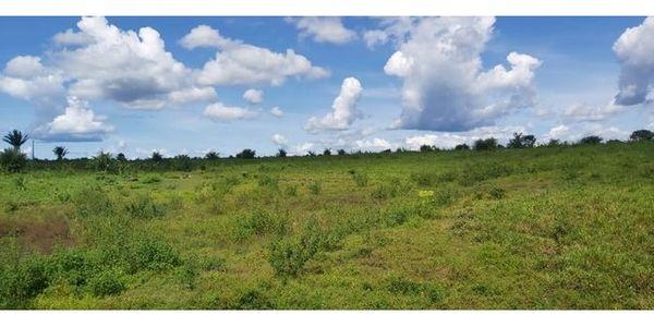 Brasilien 100 Ha Tiefpreis- Grundstück