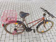 Damenfahrrad Mountainbike Optik 26 15