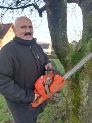 2020 Baumfällungen sowie Baumeinkürzungen im