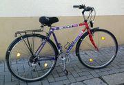 Fahrrad Herrenrad Trekkingrad 28 zoll
