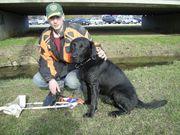 Hundetraining bvl Tierpension Dominik Lang