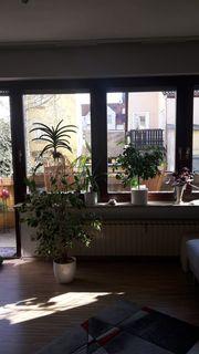 2 Zimmer Wohnung mit Sonnenbalkon