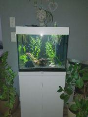 Juwel Lido 120 LED