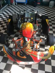 Intrepid Rotax Max Senior Kart