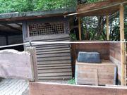 Paddockbox in Lampertheim zu vermieten