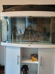 Aquariumkombination JUWEL Vision 260 LED