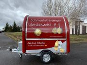 Mobiler Eiswagen Pizzawagen Imbisswagen Imbissanhänger
