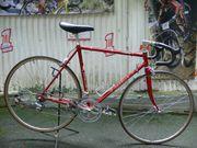 Straßenrennrad von GAZELLE 14 Gang