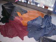 Lederhaut Rindnappa versch Farben