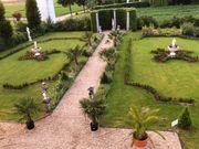 Faszination Traumgarten und Wohlfühloase