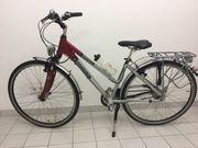 Pegasus Trapez-Trecking Bike Premio SL