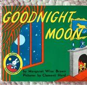 goodnight moon Buch