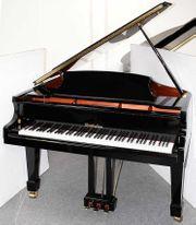 Flügel Klavier Wendl Lung 161
