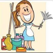 Reinigungsdame