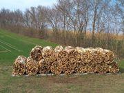 Brennholz Kaminholz B - Ware 2te