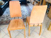 6 Esszimmer Stühle Corpus Buche