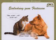 Einladung Ihrer Katze zum KOSTENLOSEN