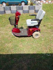 Behindertenfahrzeug Freerider rot