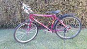 Jugendfahrrad 26 -Zoll - TAIFUN pink