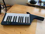 Rock Band Keyboard für die