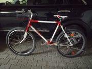 Schauff Jugendrad Mountainbike retro oversize